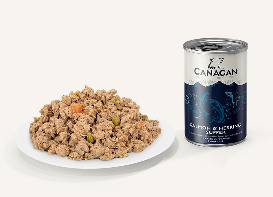 Salmon and Herring Supper Wet Dog Food