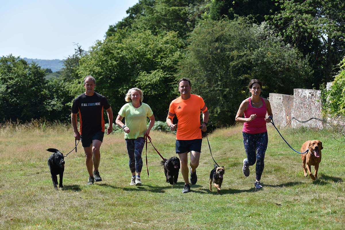 Dogs running with owners