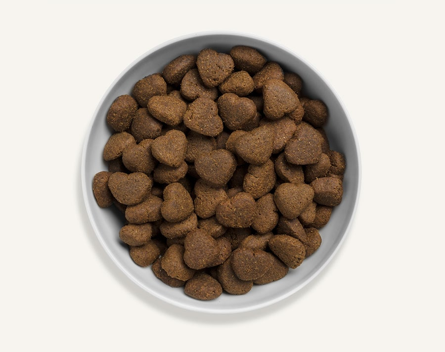 Great Life Grain And Potato Free Dog Food
