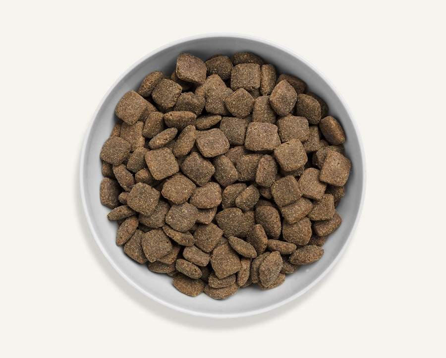 Great Abundance Dog Food